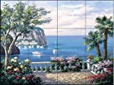Coasta Del Sol by Sung Kim Tile Mural for Kitchen Backsplash Bathroom Wall Tile Mural