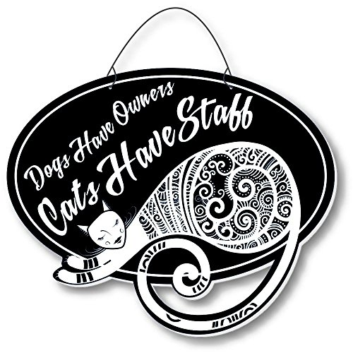 Cool Cats Sassy-Cat Laser-Etched 3-In-1 Plaques Have Staff Black front-385399