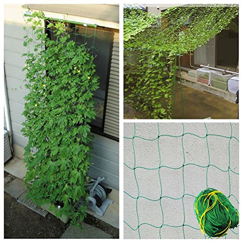 joyooo 1 8 x 3 6 m nylon plant support trellis netting for pea and bean. Black Bedroom Furniture Sets. Home Design Ideas