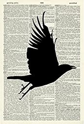 BIRD SILHOUETTE ART PRINT - BIRD ART PRINT - ANIMAL ART PRINT - VINTAGE ART - WALL ART - Vintage Art Print - Illustration - Picture - Vintage Dictionary Art Print - Wall Hanging - Book Print 548D