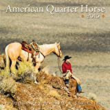 David R. Stoecklein American Quarter Horse 2015 Calendar