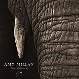 Finish Line - Amy Millan