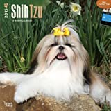 BT Shih Tzu 2015 Wall