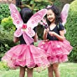 Sugar Plum Fairy Set