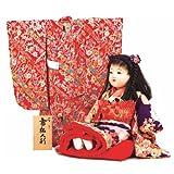 ひな人形 雛人形 お雛様 衣裳着 市松人形 【 着せ替え市松 NO.371049 】