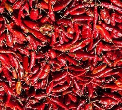 Extra scharfe rote Chilis, ganz, 50g getrocknete Chili von TRS auf Gewürze Shop