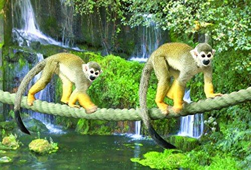 Gift Trenz Monkey- Motion Magnet