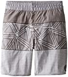 Volcom Big Boys' Elasteezy Short