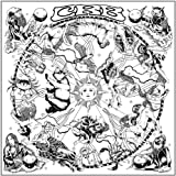 Chris Robinson Brotherhood The Magic Door [VINYL]