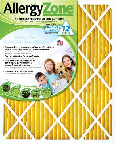 AllergyZone Furnace Filter (16x25x1)