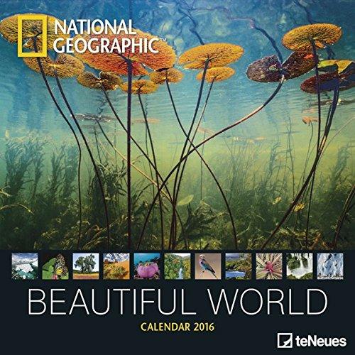 beautiful-world-ng-2016-eu