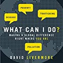 What Can I Do?: Making a Global Difference Right Where You Are Audiobook by David Livermore Narrated by Tom Parks