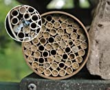 Kinsman Giant Solitary Bee Nester with 68 Tubes