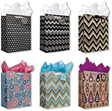All Occasion Birthday Party Gift Bags Set of 6 Large Birthday Gift Bags W Flowers Decorative Stripes