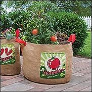 Retro Tomato Grow Bag, 20 Gallon