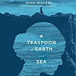 A Teaspoon of Earth and Sea: A Novel | Dina Nayeri
