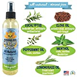 NEW All Natural Pet Hot Spot Spray | Soothing Plant Based Dog Treatment Vet and Pet Approved | Healing Allergies Anti Itch Dry Skin Relief for Dogs - Made in USA - 1 Bottle 8oz (240ml)