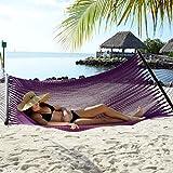Tropic Island Plum Purple Caribbean Hammock