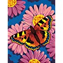 Dimensions Needlecrafts Paintworks Paint By Number, Butterfly Blossom