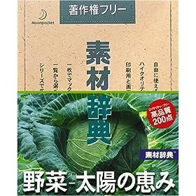 �f�ގ��T Vol.135 ���~���z�̌b�ݕ�