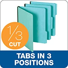 Globe-Weis Pressboard File Folders, 1-Inch Expansion, 1/3 Cut Tab, Letter Size, Blue, 25-Count (615 1-3 BLU)