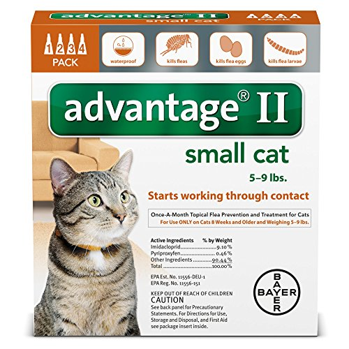 Advantage II for Cats 5-9 Lbs. ~~ 4 Months (Advantage Multi For Kittens compare prices)