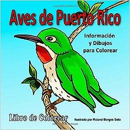 Aves de Puerto Rico: Informacion y Dibujos para Colorear (Spanish