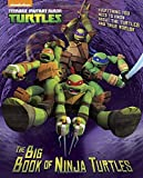 The Big Book of Ninja Turtles (Teenage Mutant Ninja Turtles) (a Big Golden Book)