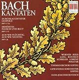 Johann Sebastian Bach: Cantatas - BWV 26, 173, 173a (Rotzsch)