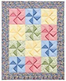 Read Prairie-Point Pizzazz: Quilts with New Dimension on-line