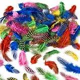 Gesprenkelte Federn zum Basteln für Kinder - ideal als Dekoration zum Karnival für Masken und Kostüme - 120 Stück