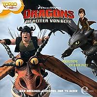 Freunde in der Not (Dragons - Die Reiter von Berk 8) Hörbuch