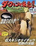 ダーウィンが来た!生きもの新伝説DVDブック 2012年 2/10号 [分冊百科]