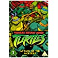 Teenage Mutant Ninja Turtles - Volume 1- Attack of the Mousers [DVD]