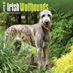Irish Wolfhounds 2014 - Irische Wolfs...