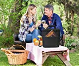 Vina 3 Bottle Wine Carrier - Insulated Tote Bag for Sports Drinks, Soda, Grape Wine, Whiskey, Cocktail & Beer - Great for Picnics, Beach, Camping, Parties, Black + Free Corkscrew