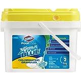 Clorox Pool&Spa 23022CLXCA Xtra Blue Chlorinating Granules 22.5-Pound
