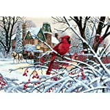 """Paint By Number Kit 20""""X14""""-Cardinal ~ Dimensions Needlecrafts"""