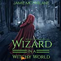 Wizard in a Witchy World Audiobook by Jamie McFarlane Narrated by Lou Lambert