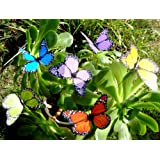 Butterfly Garden Ornaments & Patio Décor Butterfly Party Supplies Butterfly Decorations for Garden & Flo Butterfly Crafts 12 Pcs Set
