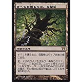 MTG 土地 日本語版 すべてを護るもの、母聖樹 CHK-273 レア