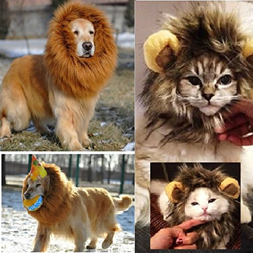 【あなたのペットが大変身】 犬猫用 ライオンのたてがみ コスチューム 愛犬 愛猫 着ぐるみ グッズ (猫ちゃん)