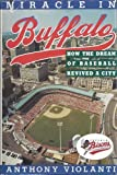 img - for Miracle in Buffalo: How the Dream of Baseball Revived a City 1st edition by Violanti, Anthony (1991) Hardcover book / textbook / text book