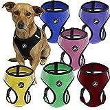 OxGord Pet Control Harness for Dog & Cat Easy Soft Walking Collar, Small, Purple