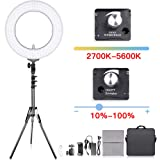 Adjustable 2700-5500K Bi-Color Temperature Ring Light, SAMTIAN 14 inches Outer YouTube Light Dimmable SMD LED Makeup Light with 2M Light Stand Phone Holder for Video Shooting YouTube Video Portraiture (Color: 14-In Ring light)