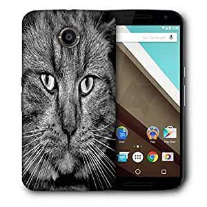 Snoogg House Cat Printed Protective Phone Back Case Cover For LG Google Nexus 6