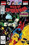img - for Web of Spider-Man (1985-1995) Annual #6 book / textbook / text book