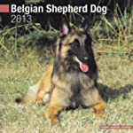 Belgian Shepherd Dog 2013 Wall Calendar