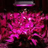 ZITRADES-20W-Hydroponic-Plant-Flood-LED-Grow-Lights-Blue-460nm-Red-630nm-Bulb-Lamp-Lighting