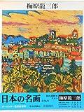 日本の名画〈18〉梅原龍三郎 (1977年)